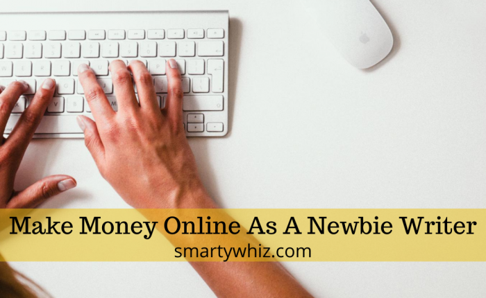 Make money online as a newbie writer